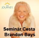 Cesta - Brandon Bays